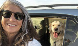 Pet ride-along